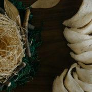 bird-nest-slider-3
